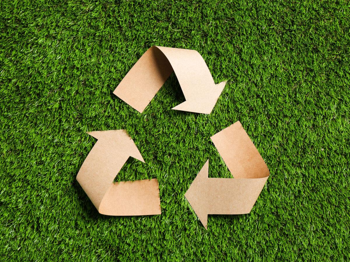 Tovaglie monouso e sostenibilità: una scelta per la salute e l'ambiente